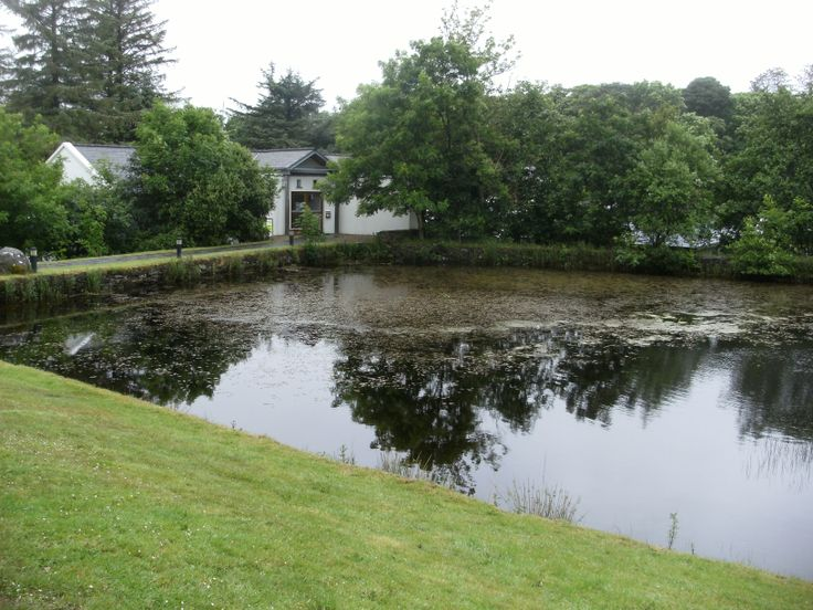 The pond at Connemara National Park, Galway.