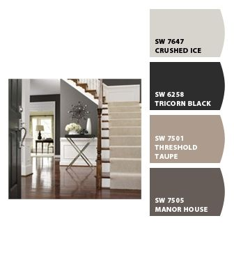 Paint colors from Chip It! by Sherwin-Williams for hall or living room