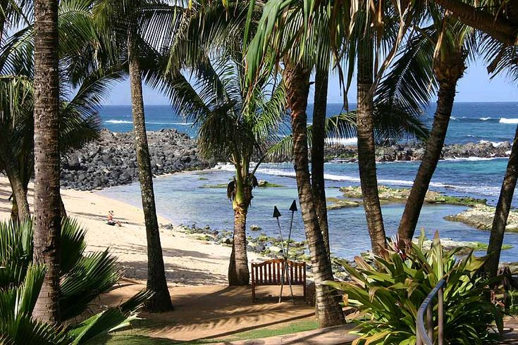 Once of the best things about living on Oahu is that it is easy to take mini-vacations to Maui - Love to Stop by Mama's Fish House whenever I am there!: Fish Houses View, Favorite Restaurant, Houses Maui, Fish Houses I, Travel, Fish House I, Fish House View