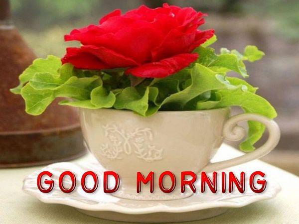 Good Morning #goodmorning cafe fleur