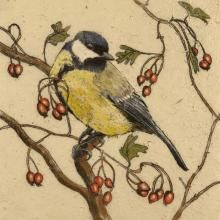 This open edition Great Tit print is mounted and signed by the artist. The prints are produced by the Giclée printing method. http://www.marketdirect.ie/great-tit-print