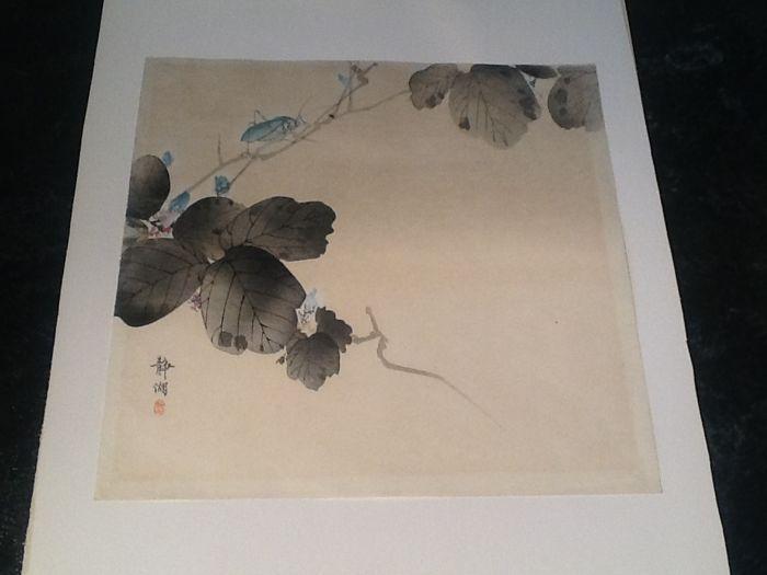 Original houtsnede van Okuhara Seiko (1837-1913) - Sprinkhanen op een tak - Japan - Eind 19e eeuw  Okuhara Seiko Houtsnede van sprinkhanen op een bloeiende tak. Vervaardigd in Japan aan het eind van de 19e eeuw.In goede staat iets kleurverlies.Ingelijst in eenvoudig mahonie lijstje gevat in pass partout.totale afmeting:32x 42 cmWerk van Seiko bevind zich in de collectie van 't Rijksmuseum te Amsterdam en andere musea wereldwijd.Het kavel word goed verpakt aangetekend verzonden.Seiko Okuhara…