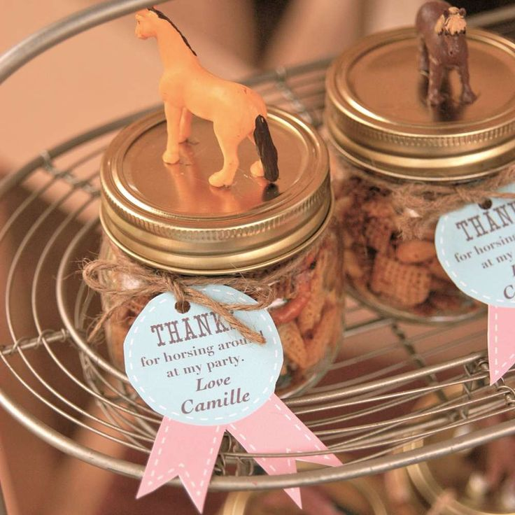Horses, pink, teal, southwestern, ranch, twine, mason jar Birthday Party Ideas | Photo 8 of 19 | Catch My Party