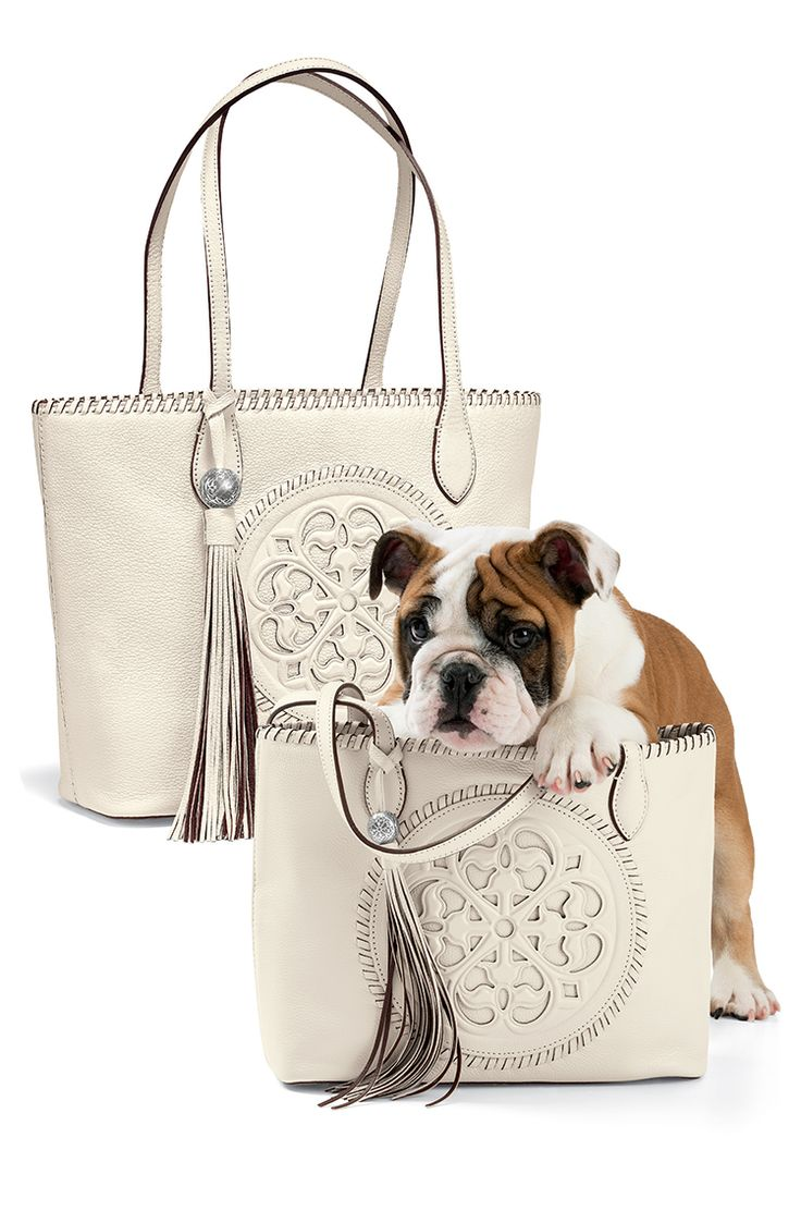 The Ferrara Collection is inspired by the breathtaking rose windows found on European built in the 12th Century. The architectural beauty is timeless and lives on in the details of these artistic leathers.  Brighton Gabriella Medallion Tote and Emilia Medium Medallion.