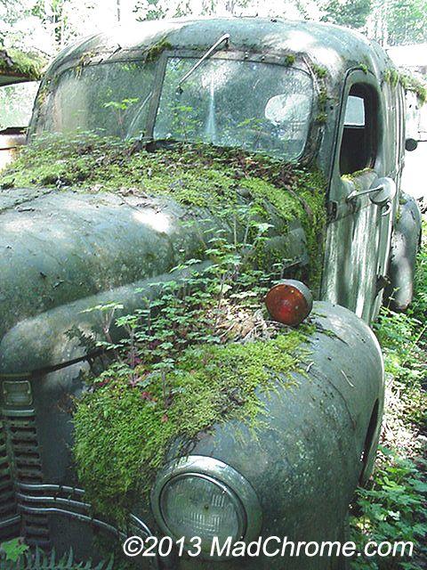 Ford Panel Truck Relic in Classic Car Junkyard