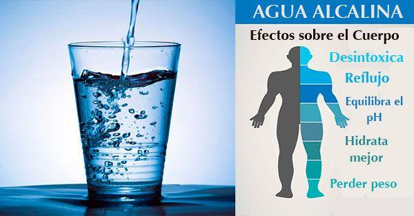 Para que nuestro cuerpo esté sano y pueda combatir las enfermedades efectivamente, debiese estar ligeramente alcalinizado. La escala de pH va desde 0, que es el más ácido y termina en 14, el más alcalino. Esto significa que el pH de 7 es neutro. Anuncio Nuestros cuerpos están naturalmente diseñados para desarrollarse en un medio …