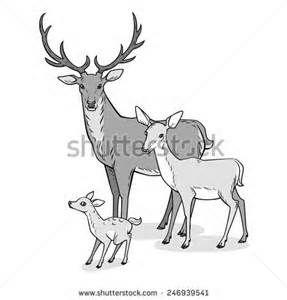 Cartoon Fawn - Bing Images
