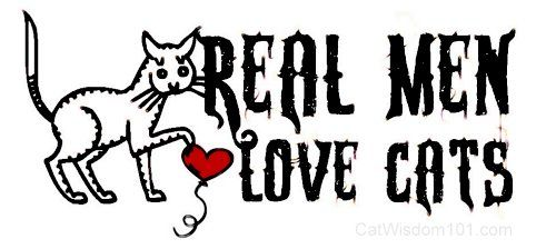 4 Big Reasons Why Ladies Love Men With Cats!  Hey guys you should read this one :-)