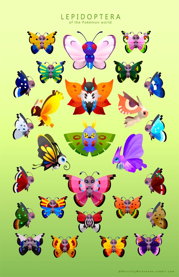 Butterflies and Moths by Wasil on DeviantArt