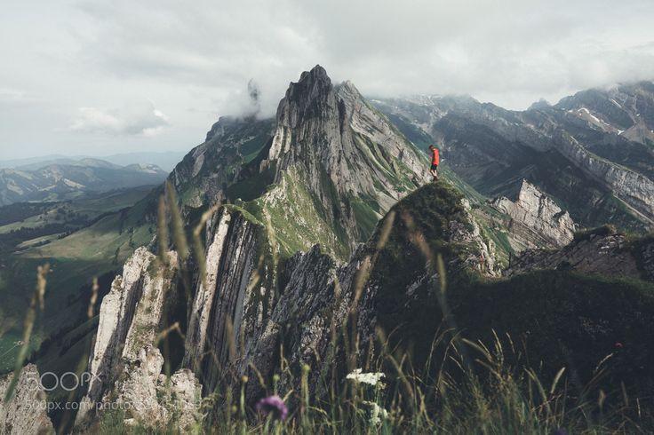 Schäfler (Michiel Pieters / Beringen, Belgium / Belgium) #Canon EOS 5D Mark IV #landscape #photo #nature