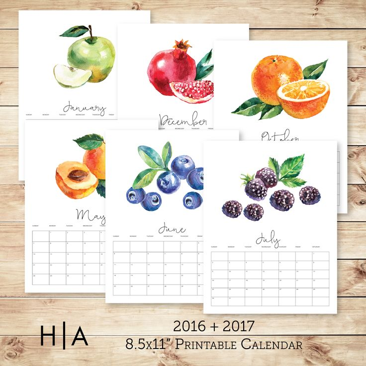 fruit calendar is the perfect addition to any kitchen. This 8.5x11 ...