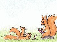 Biologi. Bilder av vilda djur att färglägga.