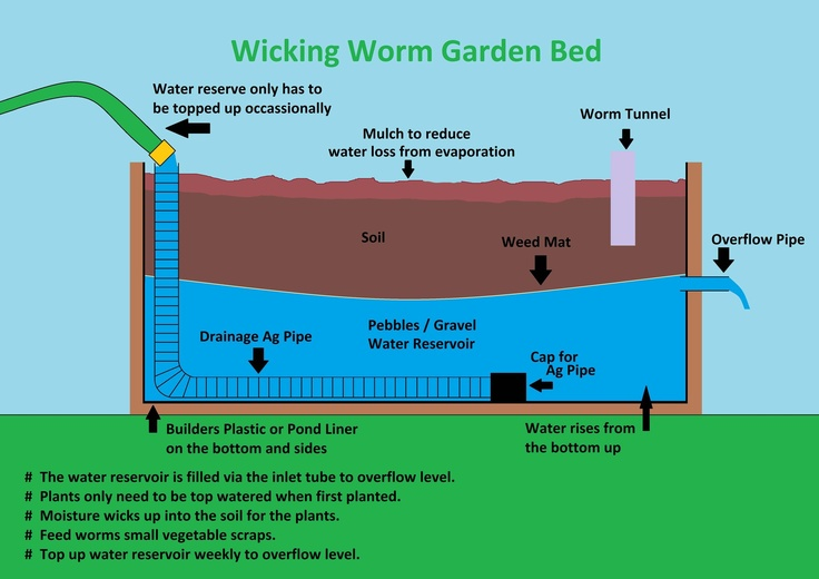 17 best images about worm beds on pinterest pvc pipes for Fishing worm farm