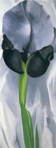 Iris 7 - Georgia O'Keeffe Estilo: Precisionismo Genero: pintura de flores