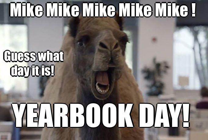 Funny Yearbook Meme : Yearbook memes pinterest
