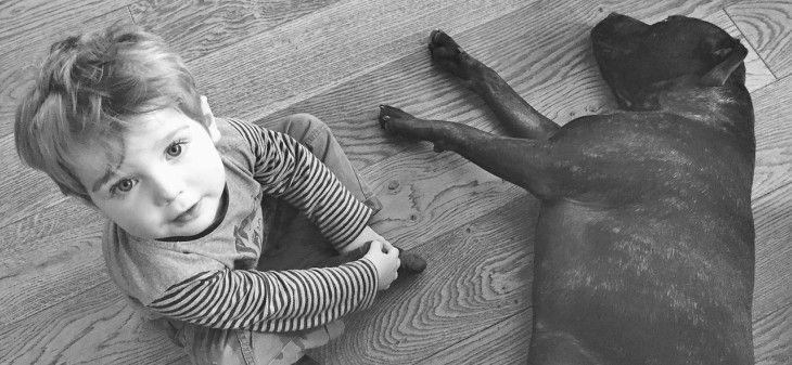 """""""A kutyák igazából embernek képzelik magukat, valószínűleg egy gyereknek."""" A világszerte elismert etológus kutatónk, Csányi Vilmos idézett gondolatából köv"""