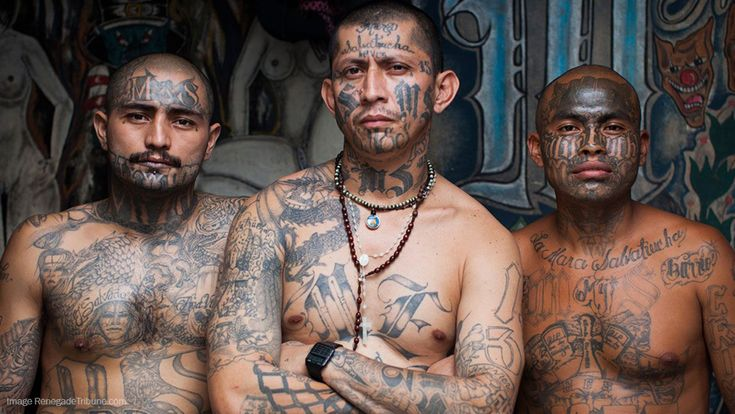 Obama's DACA program tied to growth of deadly MS-13 gang which has spread to 22 states: End it NOW – NaturalNews.com