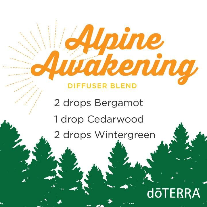 A morning in the mountains smells so fresh and bright you just want to drink in the scent all day long! Try this diffuser blend for an awakening and fulfilling scent we just can't get enough of.