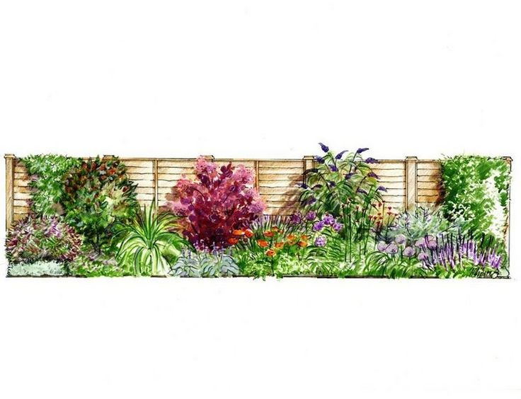 Sample Front Elevation Landscaping : Ideas about flower design drawing on pinterest