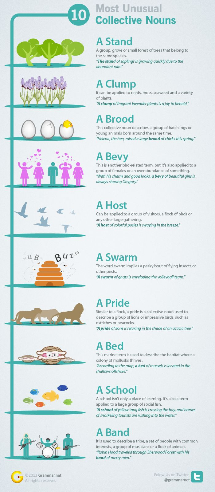 Grammar Infographic  More on grammar.net