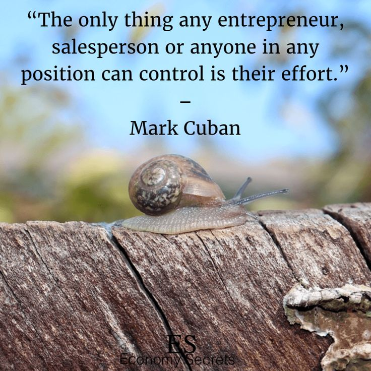 Mark Cuban Quotes 17
