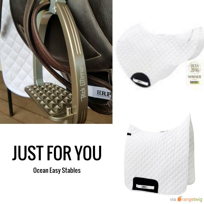 Follow us on Pinterest to be the first to see new products & sales. Tag a friend who will love this and check out our products now: #musthave #loveit#techstirrups #techstirrupsau #oceaneasystablesOcean Easy Stables