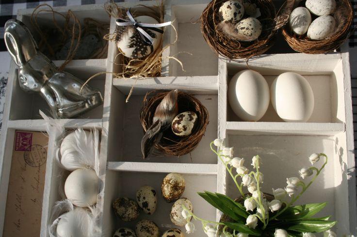 voorjaar/pasen 2014, action letterbakje gevuld met nestjes, eieren, veren, oud bakvormpje.