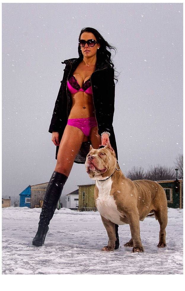 hot girls pit bulls and parolees