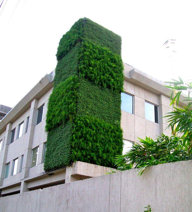 Green Wall In Delhi, India
