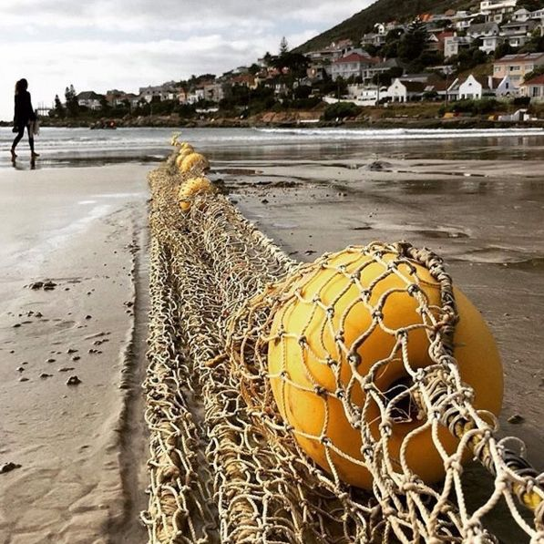 "Check out more sweet pics like these, who made them, and the stories behind them: instagram.com/capetownmag. Are you on Instagram? Tag one of your great pics with#CapeTownMag and we might just feature your image. The picture of the week for the winning #capetownmag feature!   ""11 February""   featuring @grannylamby ."