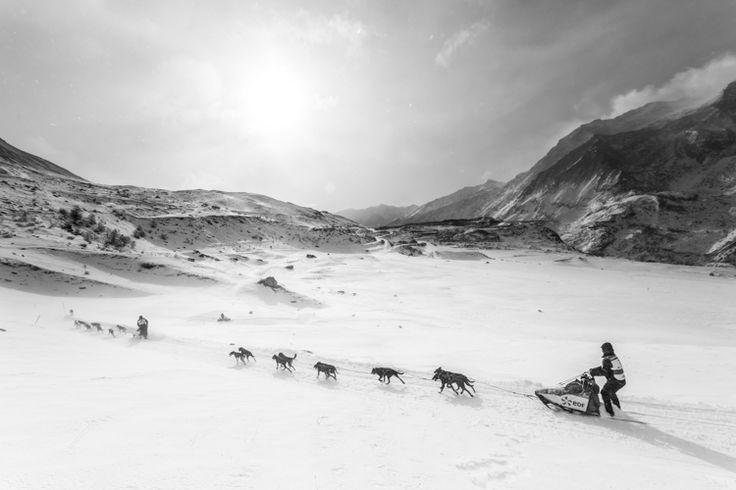 Dimanche 17 janvier : La Grande Odyssée Savoie Mont Blanc