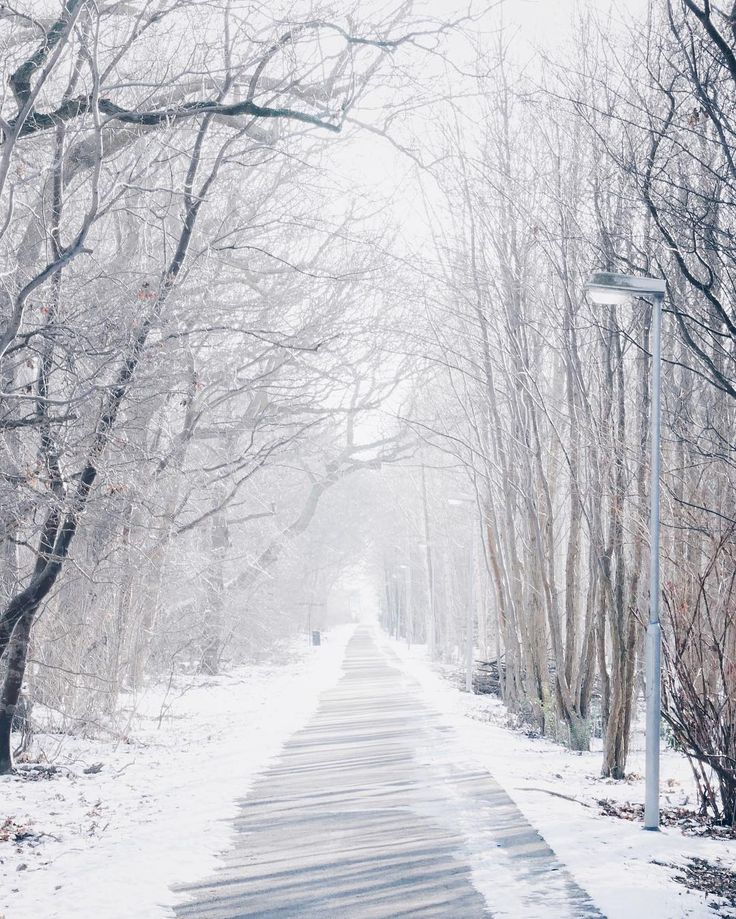 "184 Likes, 8 Comments - J M C B (@jmcbarradas) on Instagram: "": w a y : t o : p e a c e : 🎧 The Weeknd - Coming Down . . . #vsco #vscocam #winter #snow #white…"""