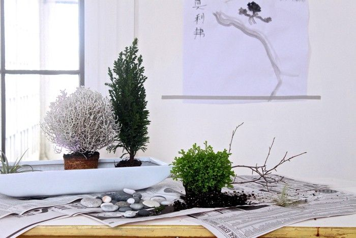 Want to add serenity to your workspace? Creating a calming desktop garden is not as impossible as you might think. (Even if you occupy a windowless cubicle.)
