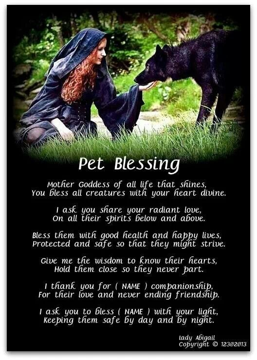 Pet blessings... I thought this was lretty cool:)                                                                                                                                                                                 More