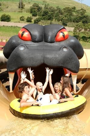 Dare to ride the Taipan at Jamberoo Action Park south of #Sydney #Australia http://www.tripadvisor.com.au/ShowForum-g255058-i121-New_South_Wales.html