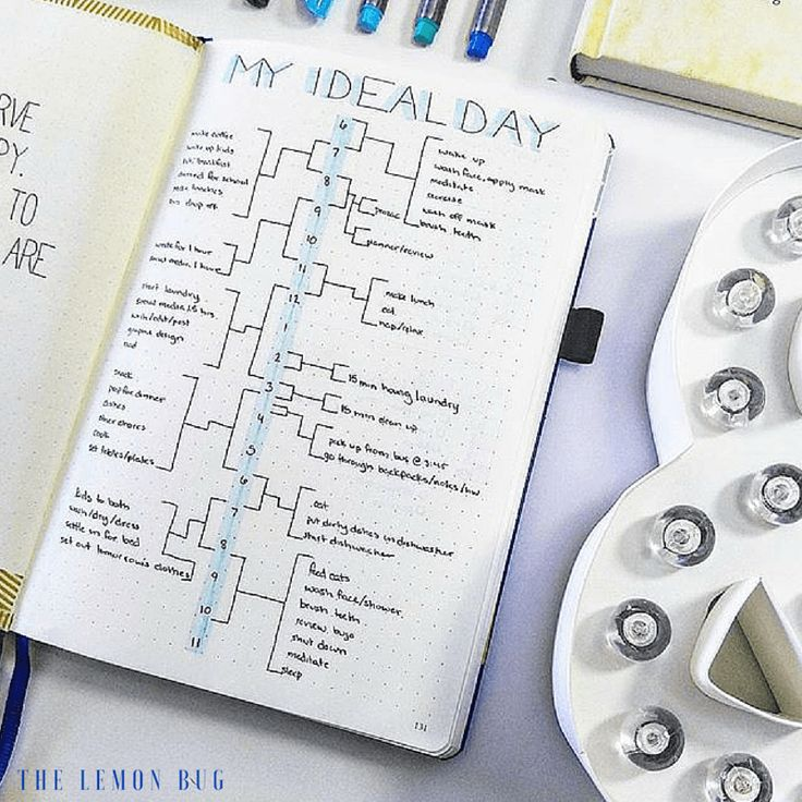 May Bullet Journal Update With The Lemon Bug Bullet