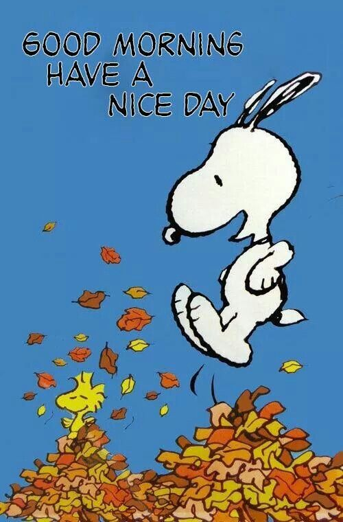 Snoopy and Woodstock's Saturday Fun