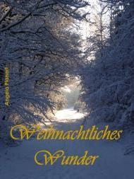 Dino´s Bücherecke: Weihnachtliches Wunder Angela Planert