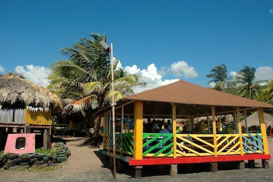 essay on jamaica 50