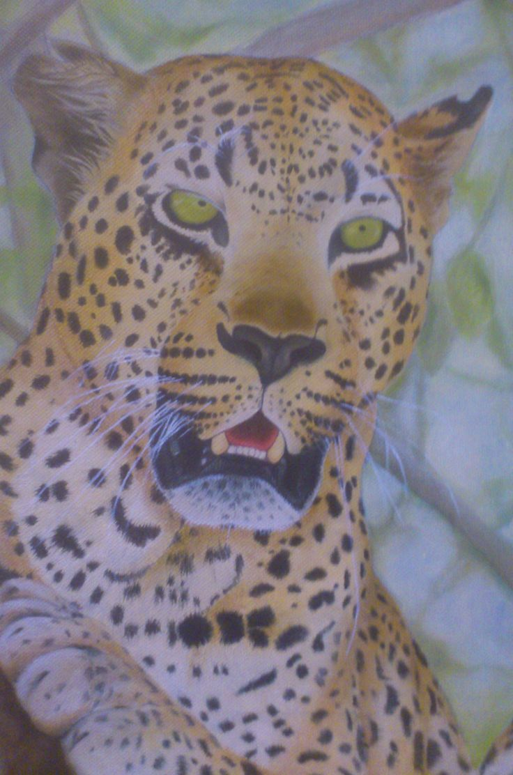 Leopard Oil Painting (Close Up) - Christiaan Combrink 2015