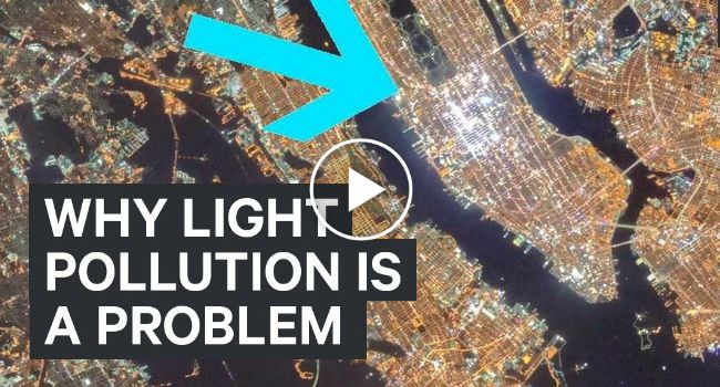 Why Light Pollution Is A Problem