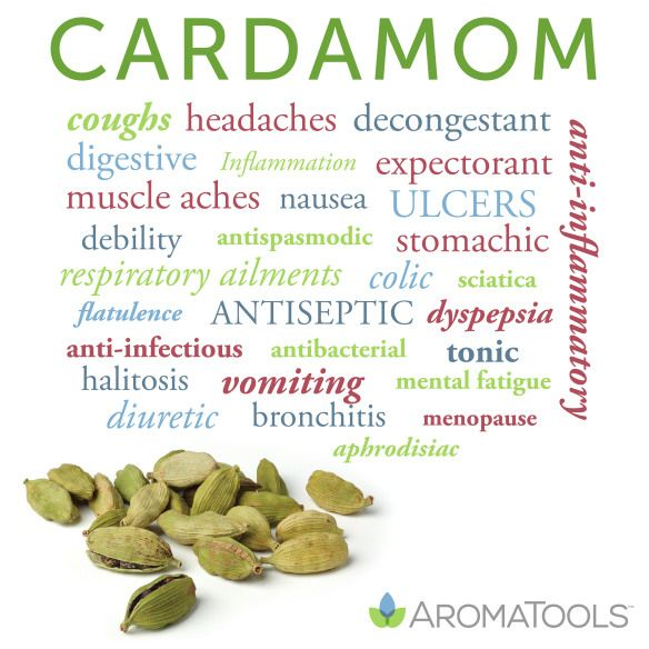 Essential Oil Spotlight: Cardamom. On blog.aromatools.com