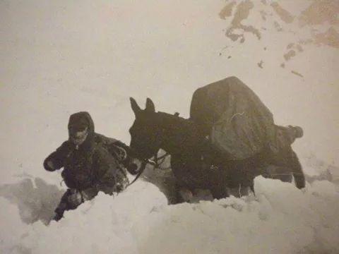 Alpino italiano e il suo mulo fedele, la prima guerra mondiale