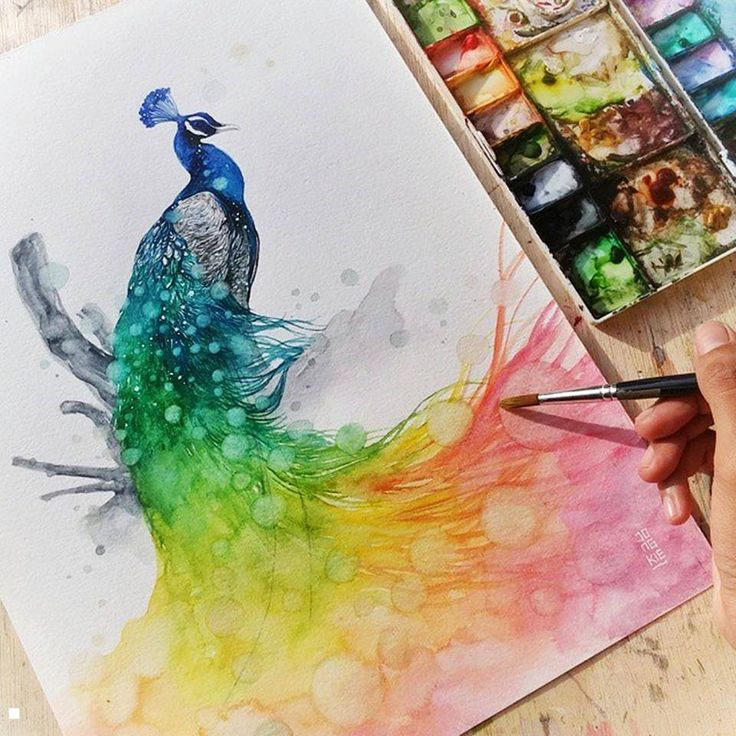 25+ best ideas about Watercolor peacock on Pinterest ...