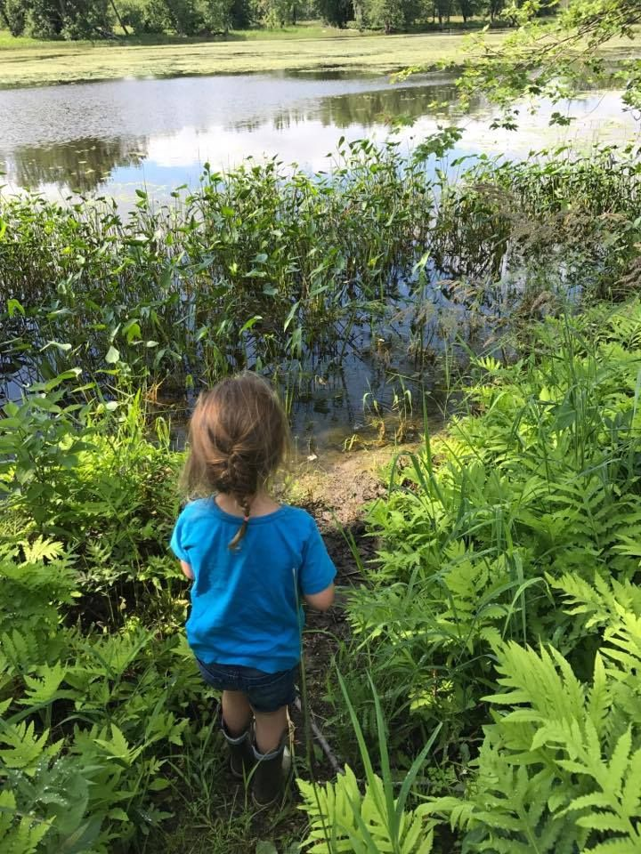 Petrie Island: after the flood — Kids in the Capital | Petrie Island  Summer 2017 | Outdoor activities for kids | Ottawa parks | Kids in the Capital | Petrie Island after the flood