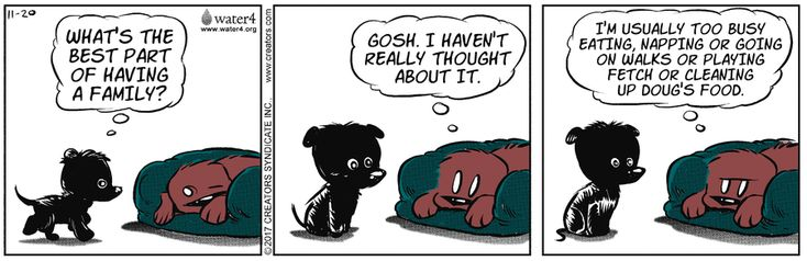 Dog Eat Doug by Brian Anderson for Nov 20, 2017 | Read Comic Strips at GoComics.com