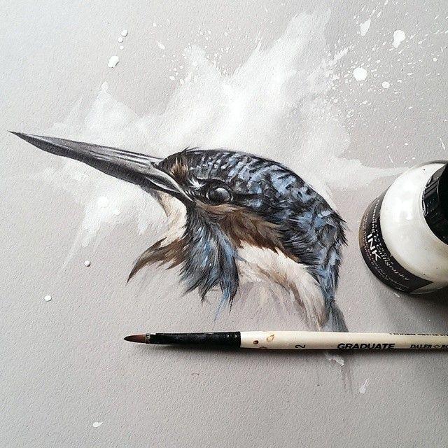 Kingfisher study, done with mixed media - animal portrait - Sol Whiteside