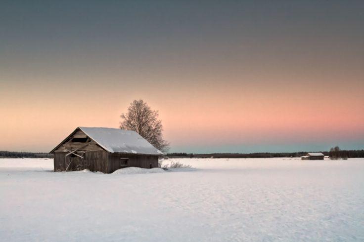 Lonely Barns On The Snowy Fields by Jukka Heinovirta