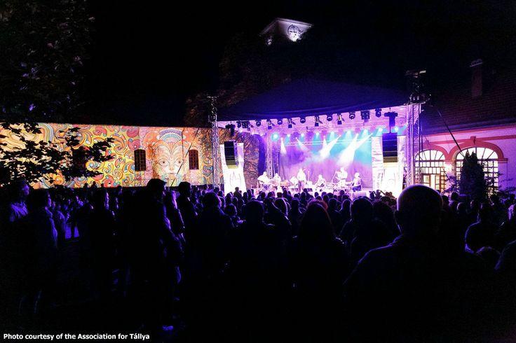 NEW TÁLLYA WINE FESTIVAL WITH FOCUS ON ARTS AND LITERATURE http://www.tokajtoday.com/2016/09/26/new-tallya-wine-festival-with-focus-on-arts-and-literature/