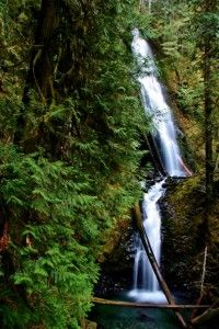 6 Quintessential Hood Canal Hikes